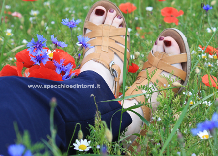 scarpe relax shoes easy n rose calzature moda fashion blog blogger collaborazioni brand