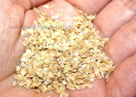 germe di grano olio proprietà benefici