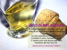 Olio di Melaleuca: 10 rimedi naturali da preparare con il Tea Tree Oil