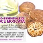 Olio essenziale di Noce moscata: proprietà, impieghi e rimedi naturali