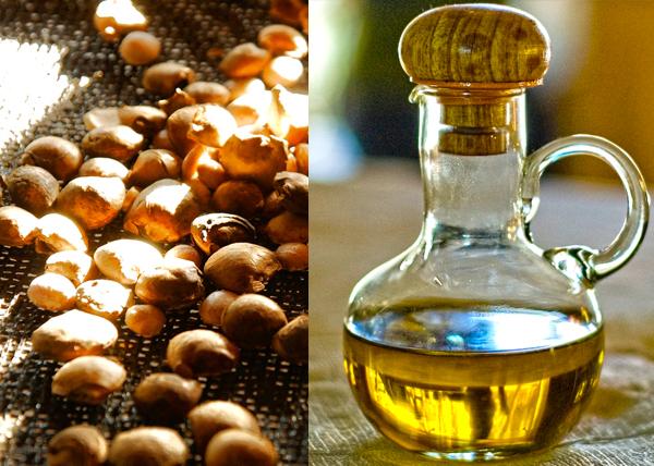 olio sacha inchi semi rimedi naturali virtù benefiche