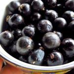 Bacche di Açai: proprietà, benefici e rimedi naturali